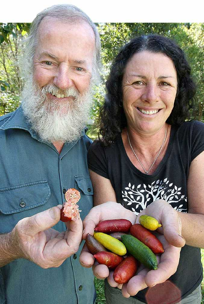 Native bushfood experts Graeme White and Veronica Cougan, of Witjiti Grub Bushfood Nursery, with finger limes.