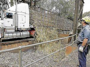 Loans boost sugar industry