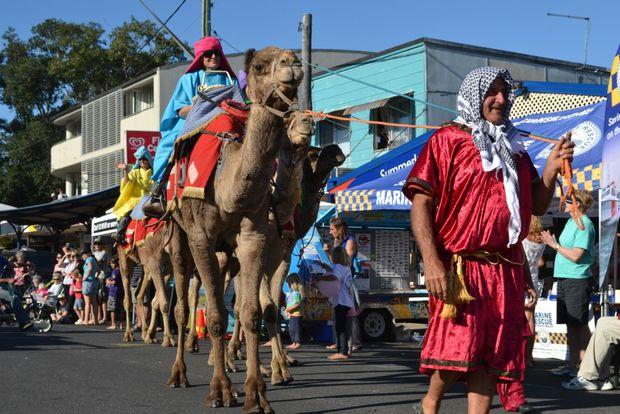 DESERT SHIPS: It's not often Oak Street, Evans Head sees camels travelling down the road. Photo Samantha Elley / Rivertown Times