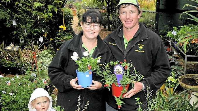 Lorelei and Matthew Bartkowski and daughter Robyn have plenty of varieties suited to winter planting at the Highfields Garden Centre.