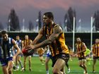 Weekend AFL Round-up