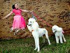 Emily Myatt with poodles Hendricus and Mirusia.