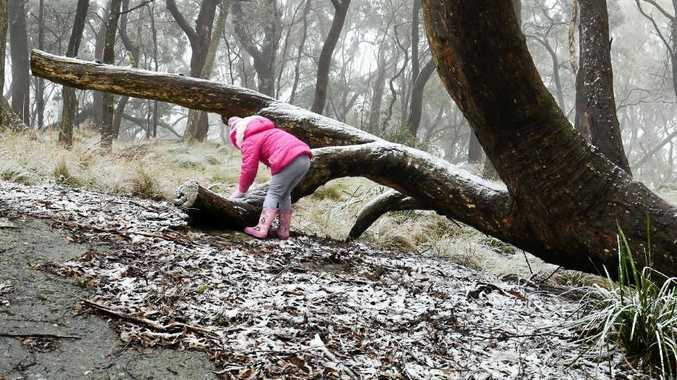 Eva Mundy plays in the snow at Mt Mackenzie near Tenterfield on Tuesday. It is scenes such as this which are encouraging people to head to the Granite Belt for winter escapes.