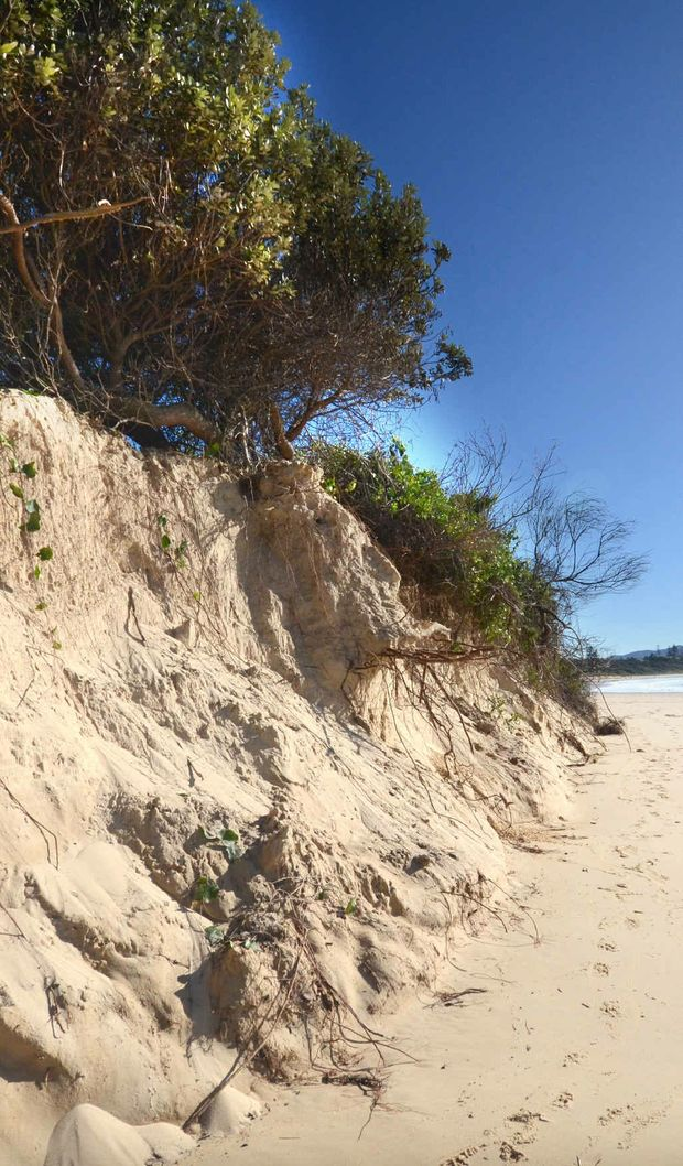 Sawtell Beach has been left worse for wear.