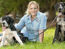 IT seems Toowoomba dog owners have been barking up the right tree now that Toowoomba Regional Council has begun work on the city's first fenced-off dog park.
