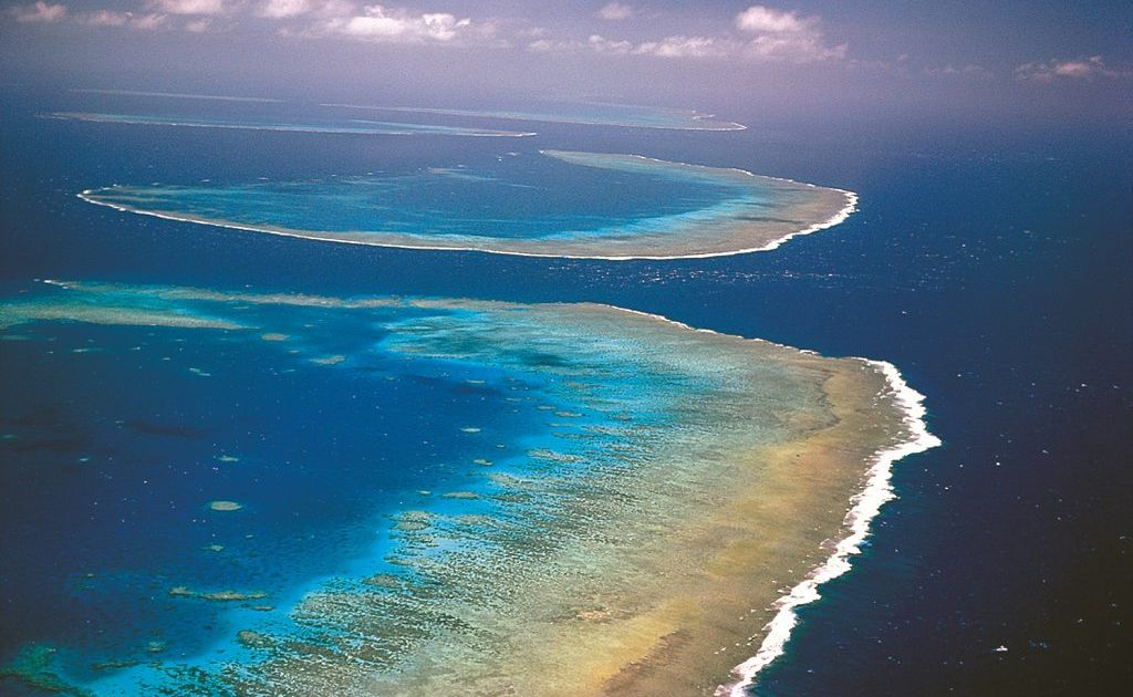 Protecting the Great Barrier Reef will be the subject of a campaign to run throughout the federal election.