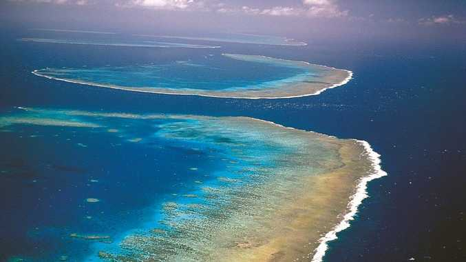 A Sydney corporate law specialist has questioned the transparency of the Great Barrier Reef Foundation's board.