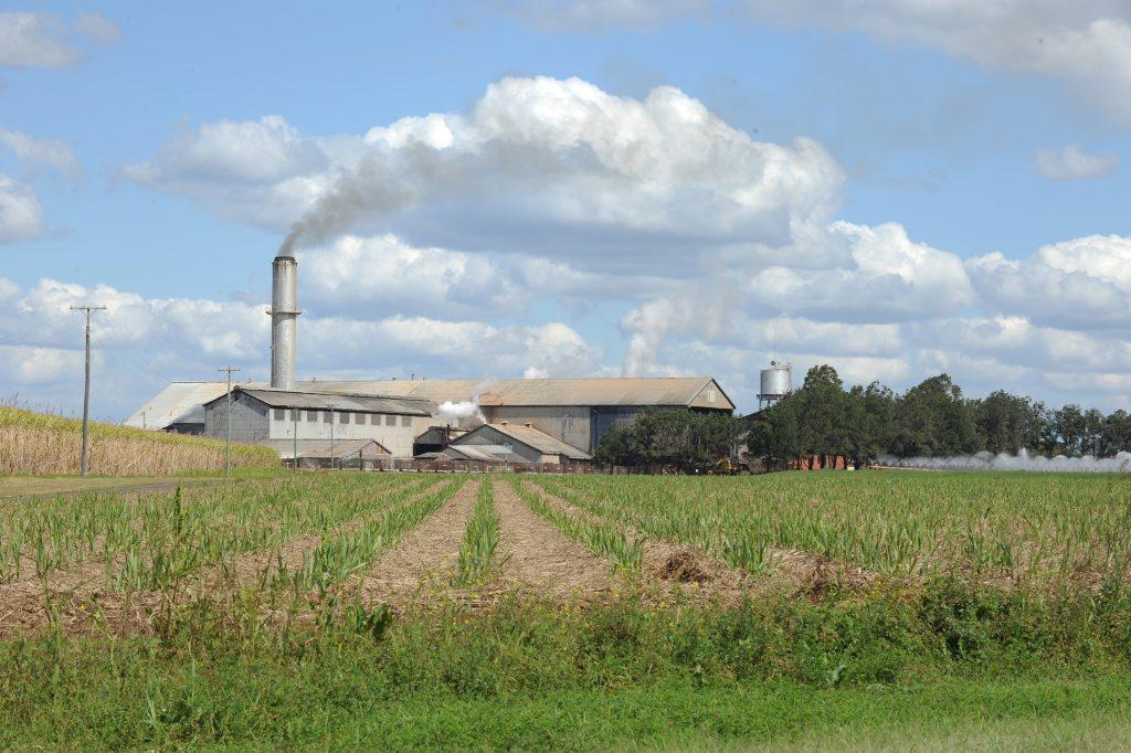 Bingera Mill