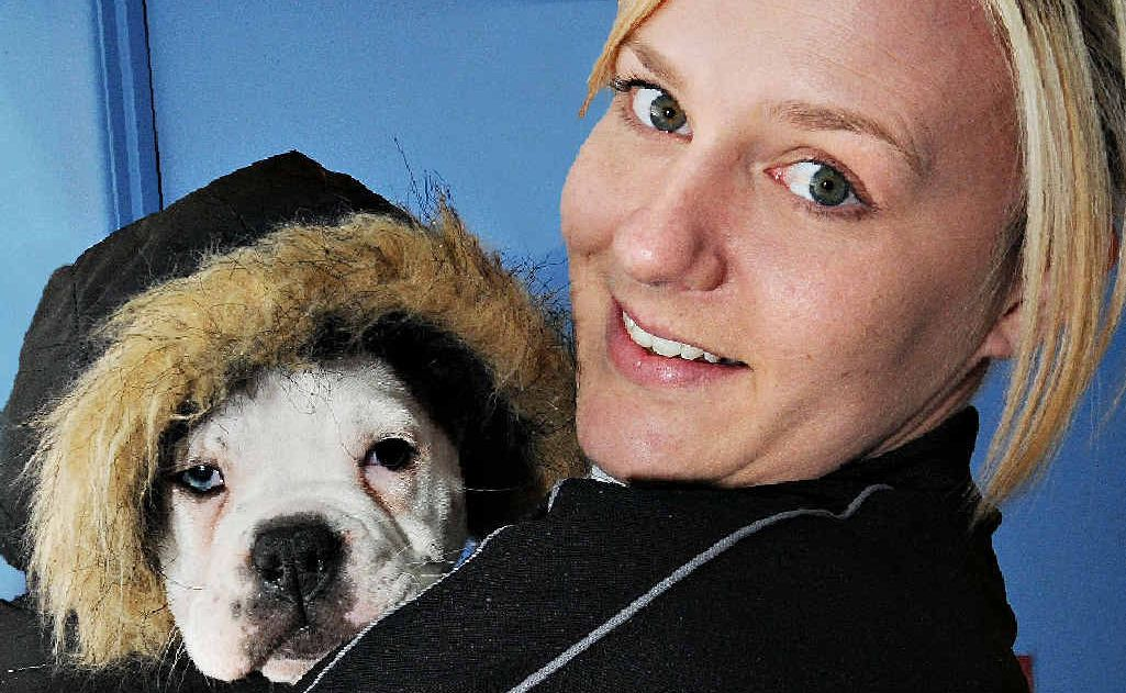 Mackay Pet Superstore puppy manager Jaz McLean helps a stylish six-week old female Australian bulldog model a snowcoat.
