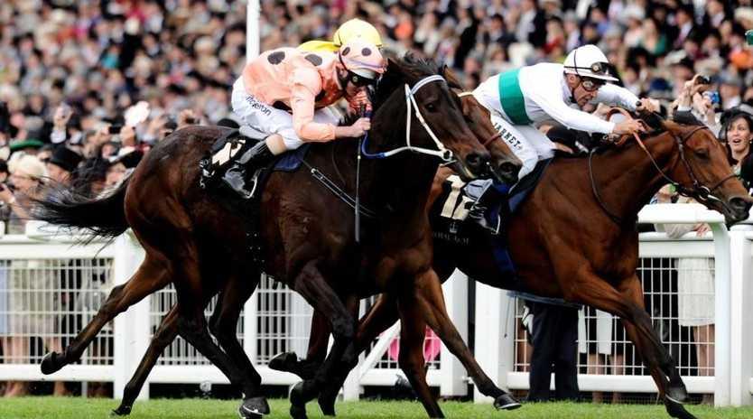 Jockey Luke Nolen and Black Caviar in action at Royal Ascot.
