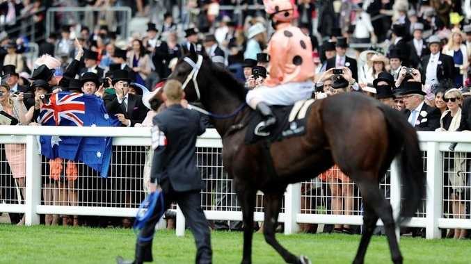 Black Caviar returned to Australia after emerging victorious in the Diamond Jubilee Stakes at Royal Ascot.