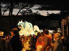 Creatures light up solstice