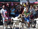 GOAT racing in Roma is finished after extremist organisation Animal Liberation forced Qantas into turning their back on Easter in the Country.
