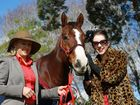 Grafton Ladies Day Luncheon at No 1 Duke Street and visit by Takeover Target: Lady of the Carnival Elyan Shotbolt and Sky Racings Bernadette Cooper with Takeover Target.