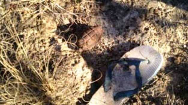 A live hand grenade was found down an old mine shaft west of Ebor at the weekend.