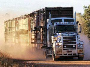 Glitch puts focus on road trains