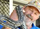 JOE BLAKE: Snake catcher Anthony Zink has been kept busy catching snakes like this carpet python due to the recent warm weather.