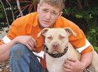 Josh Giles, with his adult pitbull-cross Slayer, says his dogs are docile and shouldn't be classed as dangerous.
