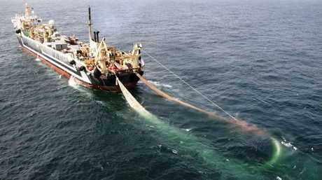 Super Trawler