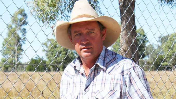 QWDTA president Paul Wroe says working dogs are helping to fill the labour gap on the farm left by workers heading to the mines.