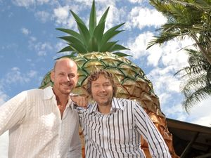 Big Pineapple may become home for terror theme park