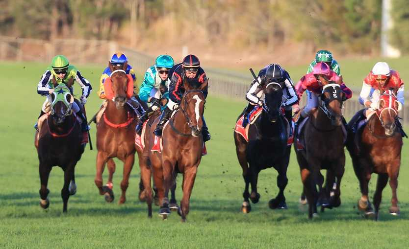 Horse racing at Corbould Park. FILE IMAGE