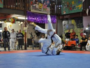 Club searches for 54 missing judo mats