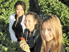 Rena Dang, Gina Dang and Trinity Dang with the fresh strawberries from SSS Strawberries.