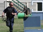 Trainer Lyle and Jetta the police dog on an exercise run.