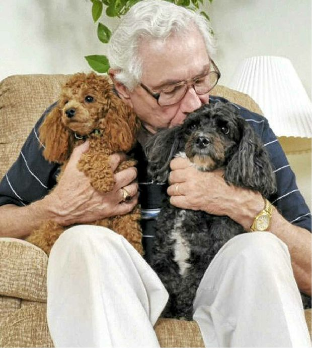 Aging pets need much the same care regimes as elderly people.