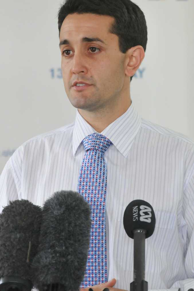 Local Government Minister David Crisafulli.