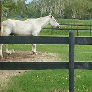 Plasmar Synthetic Fence Posts Rural Weekly