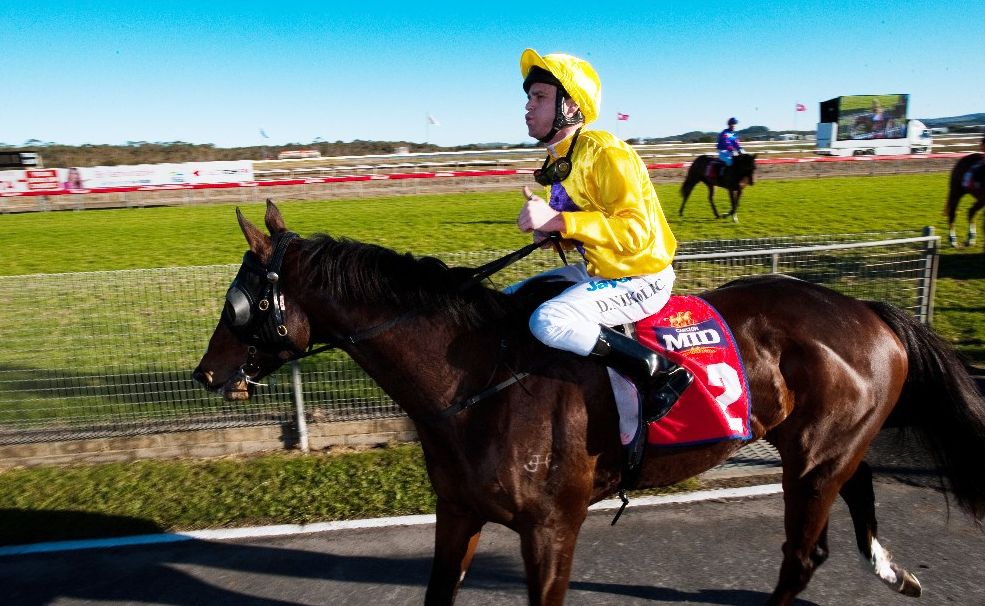 Danny Nikolic helped Symposium to a second successive win in the Daniel Baker Sprint. Trainer Trevor Hardy was thrilled to win the feature race on Coffs Harbour Gold Cup Day again.