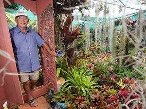 Bromeliad paradise on show