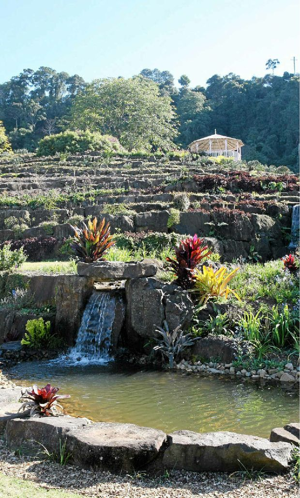 The waterfall at the bottom of the garden sold Frank Shipp on the site for the Maleny Botanic Gardens.