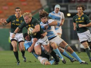 Springboks too strong for Pumas