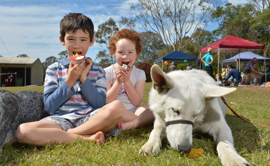 Heather and Eden Devon with cupcakes and Koeda Bear with a pupcake support a fundraiser for the RSPCA at Buderim.