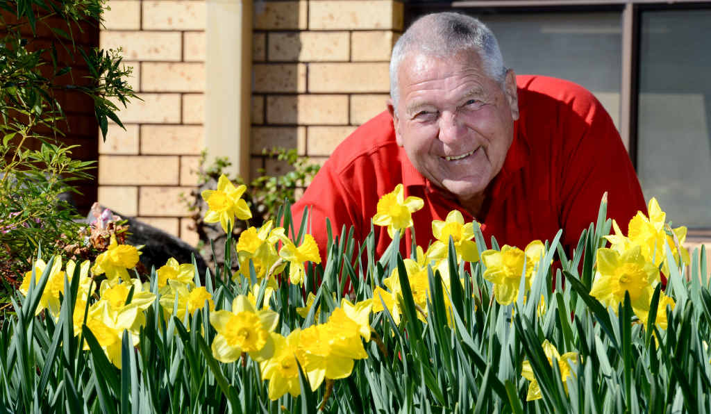 Barrie and June Pemberton's yard was a sea of yellow for Daffodil Day yesterday.