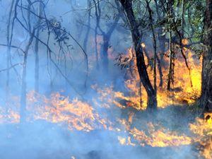 Smoke over Spring Mountain Estate
