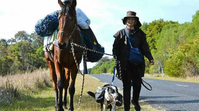 DELLA'S DESTINY: Lucky the horse, Della the dog and Maricy Dalsanto in training for their 5000km trek between Coraki and Dampier, WA, for the Animal Welfare League.