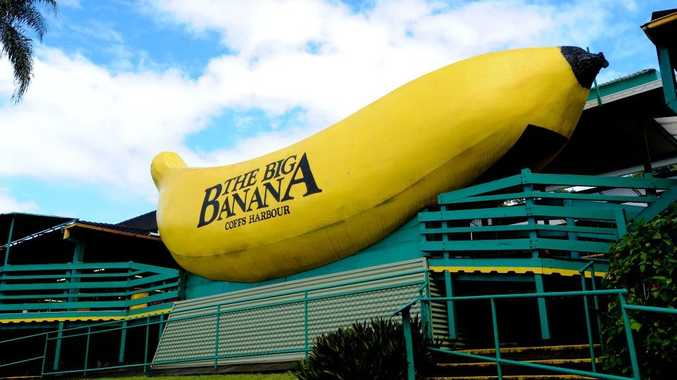 Big Banana master plan held up road access. Photo Trevor Veale / The Coffs Coast Advocate
