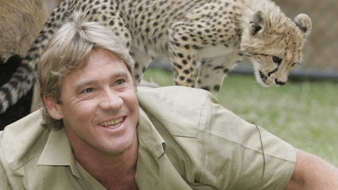 Steve Irwin with a baby cheetah at Australia Zoo.