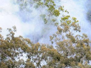 Bribie Island National Park hazard reduction burn