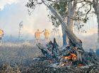 Peregian bushfire endangers herd