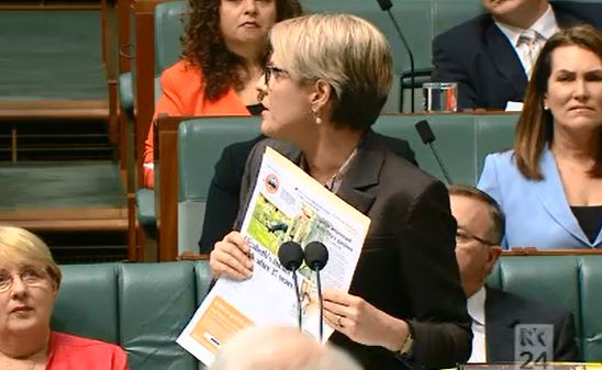 JOB CUTS: Federal Health Minister Tania Plibersek holds up a copy of The Chronicle during question time.