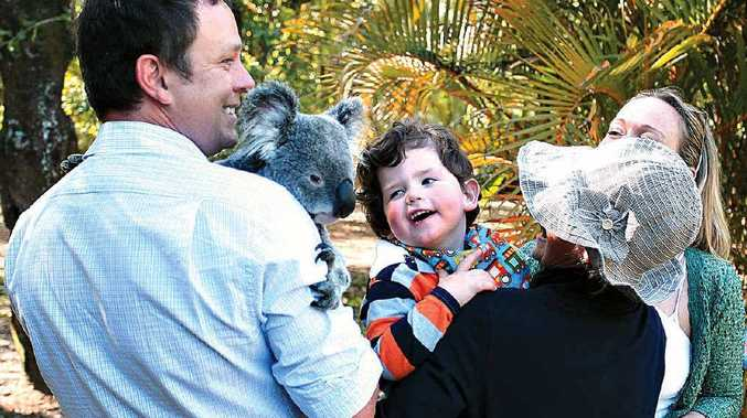Two-year-old Jackson Keleher and his father David get up close with a koala at Australia Zoo.