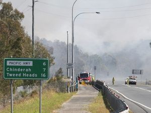 Fire claims 95 hectares of park