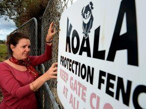 Fire a threat to koala population