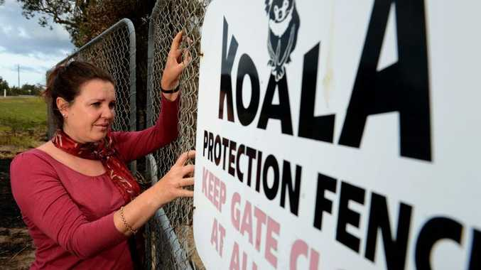 Jenny Hayes at a fence designed to keep koalas safe from traffic near the site of a bushfire in Cudgen.