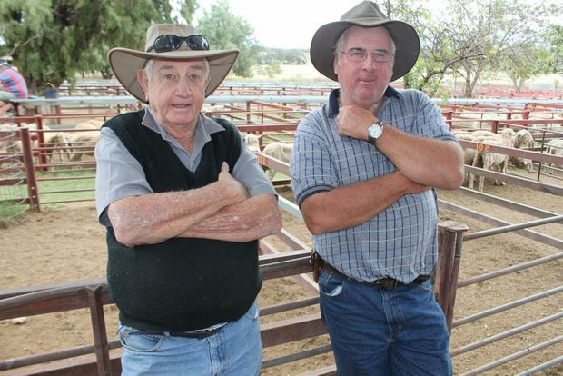 There'll be plenty to talk about as the Warwick saleyards celebrates 50 years.